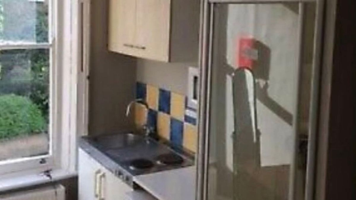Tiny studio flat with shower and hob right next to bed – and there's no toilet